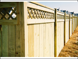 Latice Top Fence